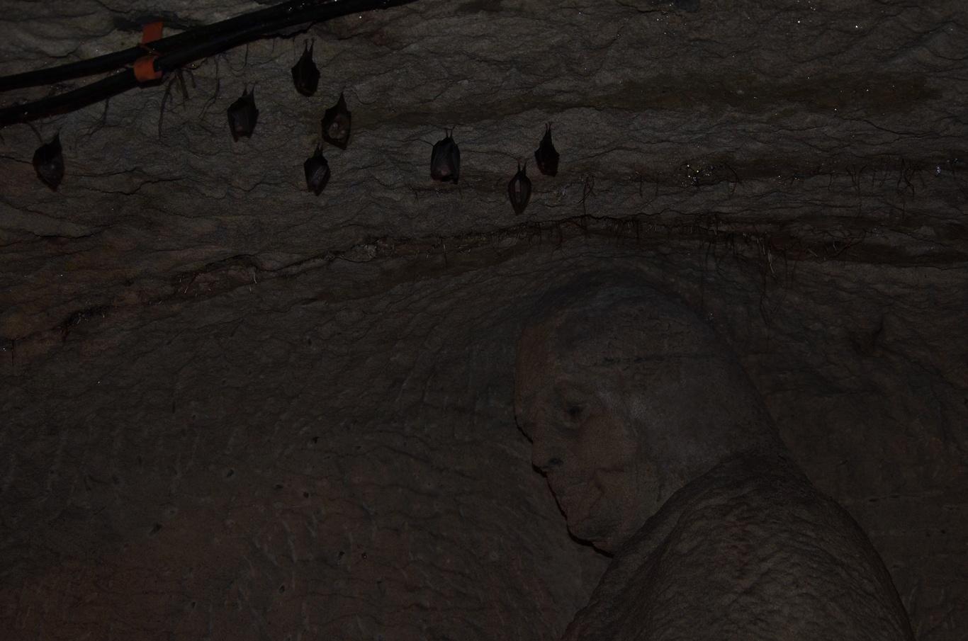 Jeskyně blanických rytířů, Rudka