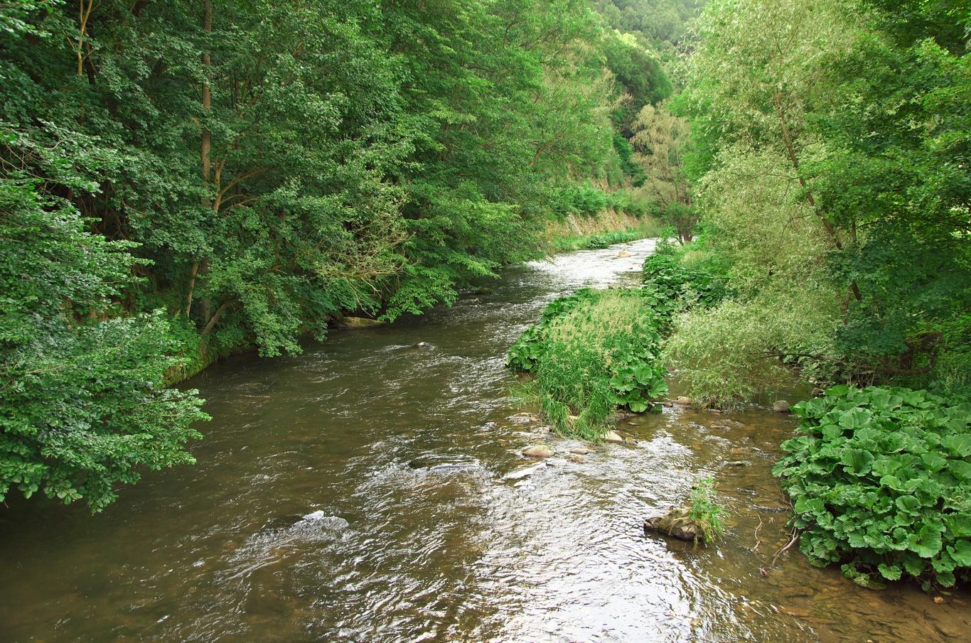 Řeka Svratka u bývalé papírny, osada Prudká