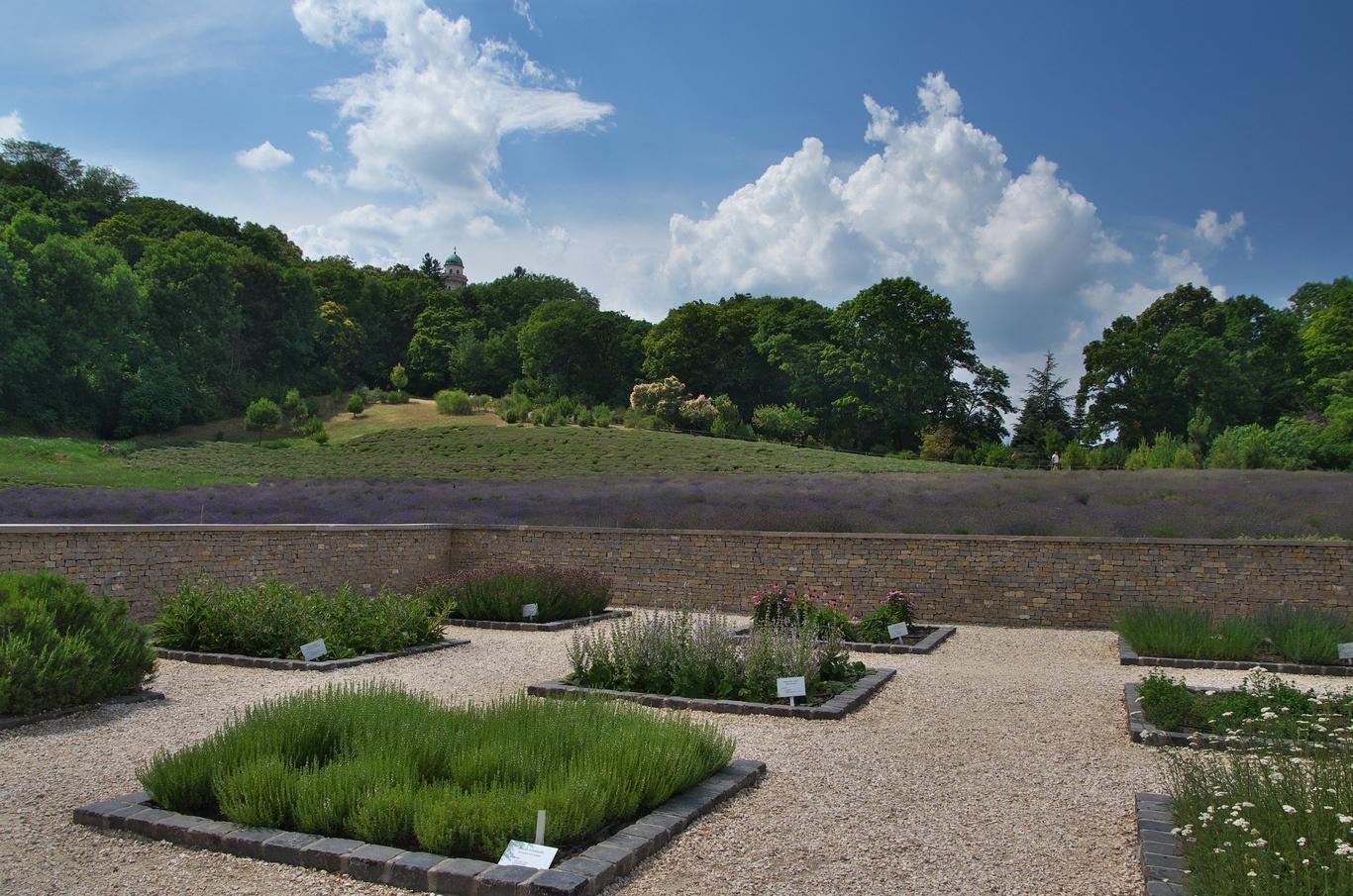 Bylinková zahrada v Pannonhalmě