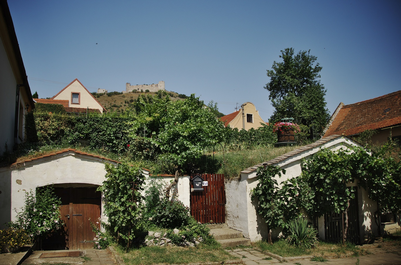 Pavlov, Česká ulice, v pozadí na kopci zřícenina hradu Děvičky