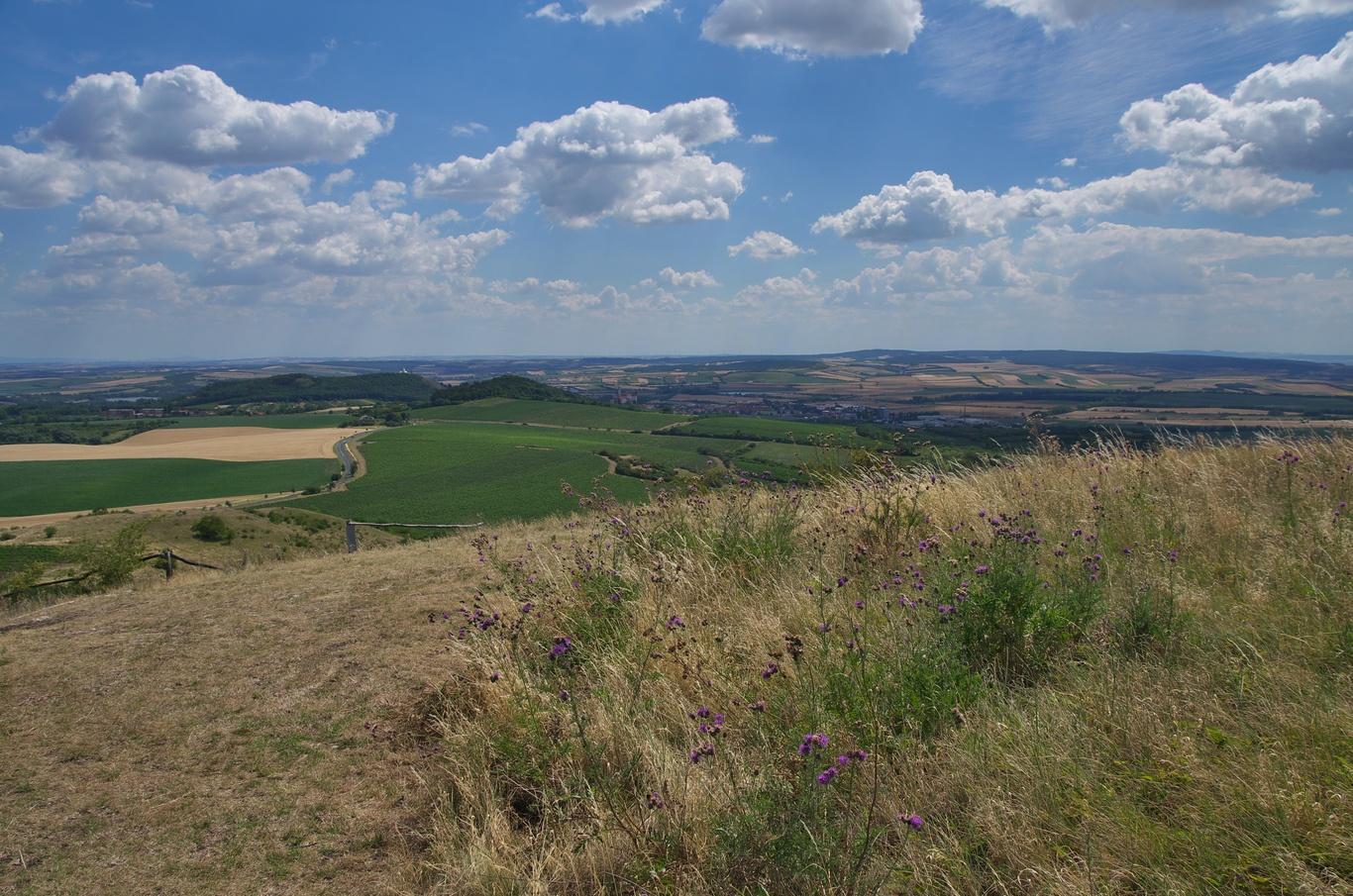 Pohled ze Stolové hory směrem k Mikulovu