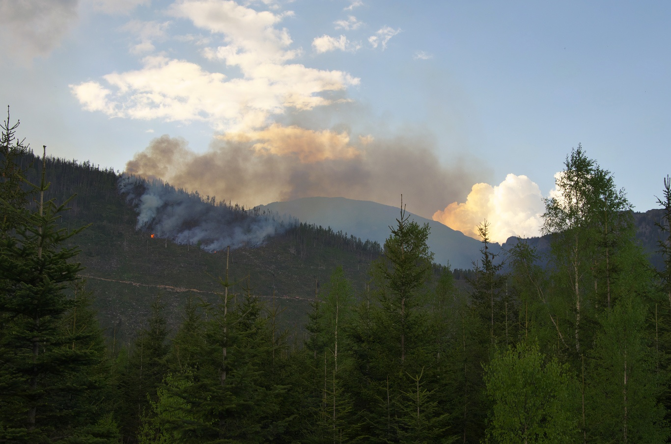 Požár nedaleko obce Kežmarské Žĺaby
