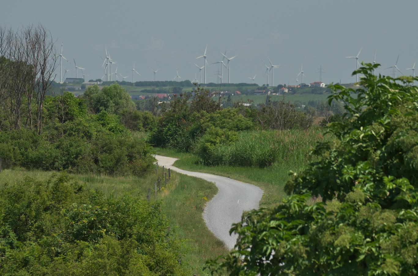 Cyklostezka od Podersdorfu na sever