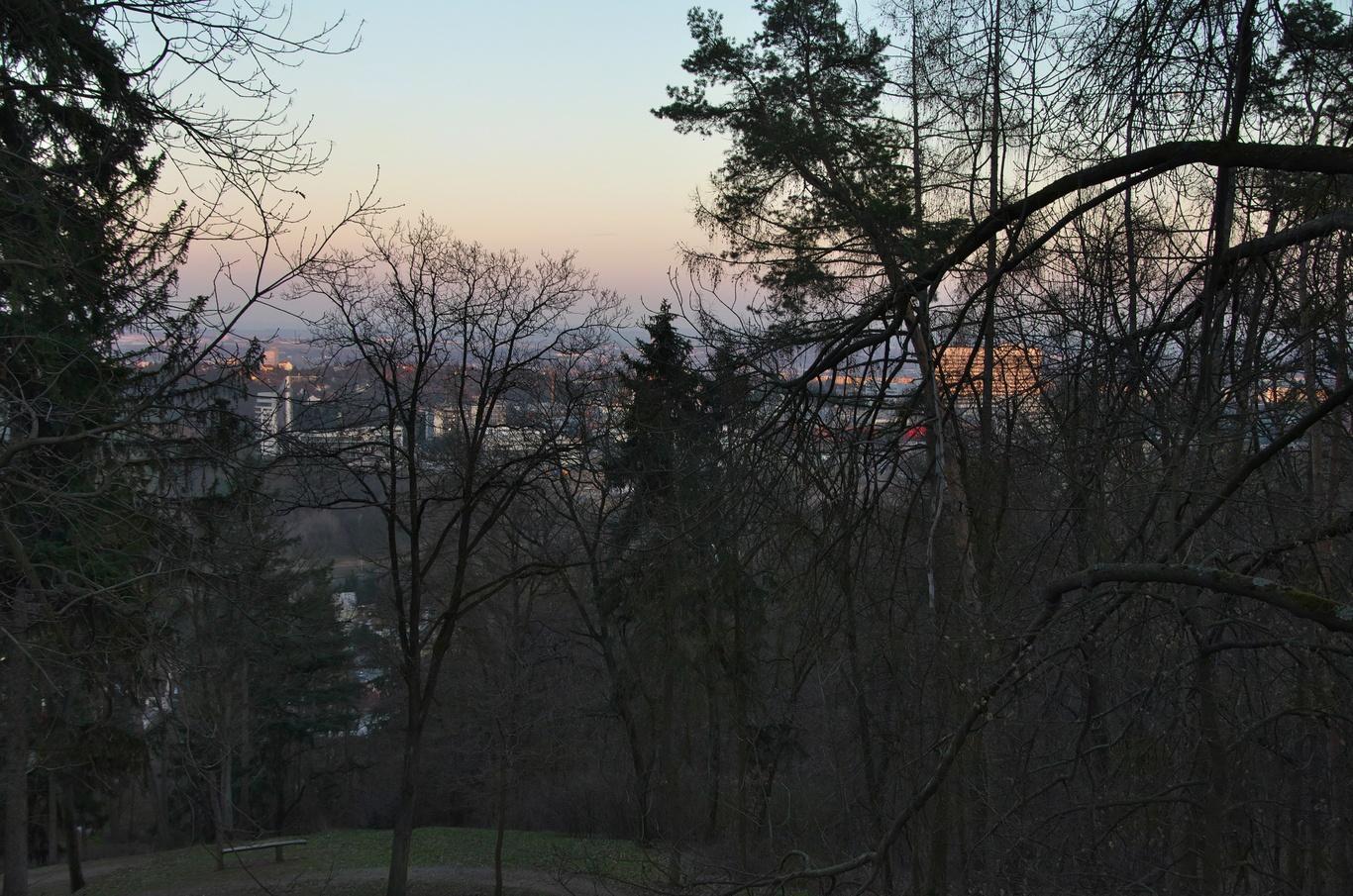 Velmi omezený výhled z rozhledny na Kamenném vrchu