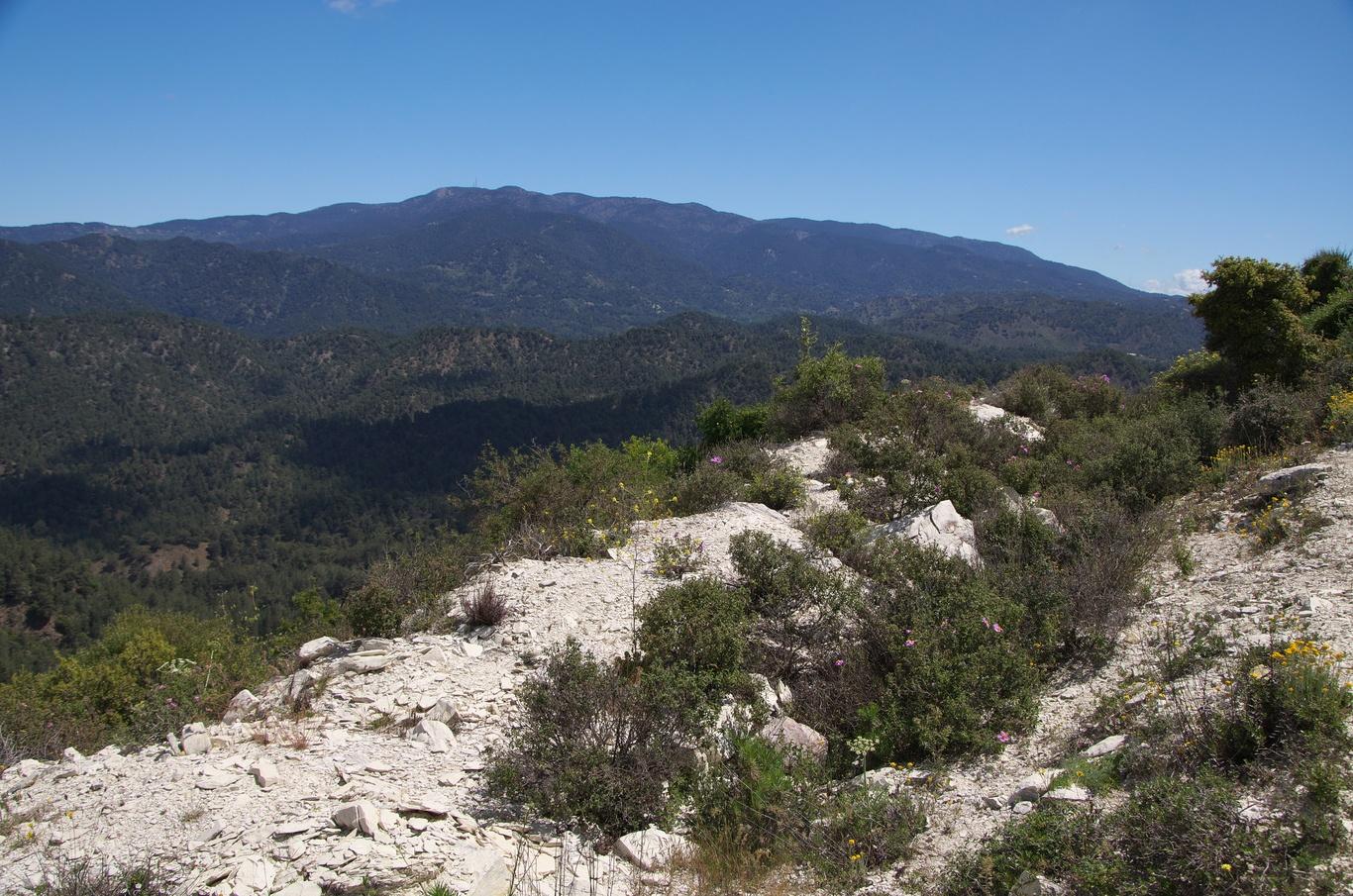 Pohoří Troodos - v pozadí hora Olympos