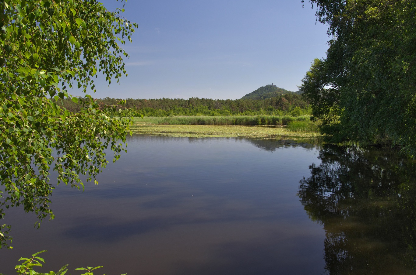 Břehyňský rybník
