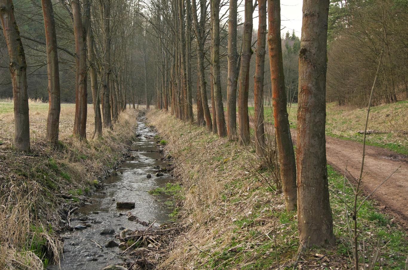 Potok Lubě