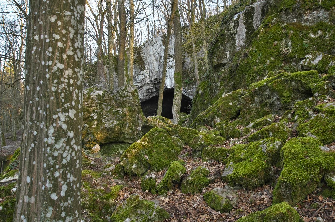 Jeskyně Pekárna