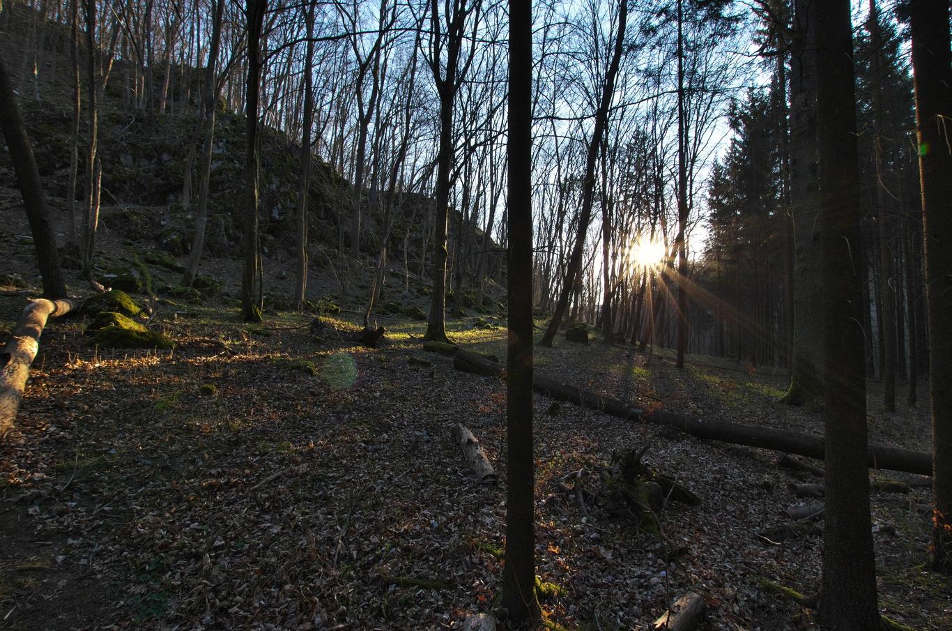 Údolí Říčky